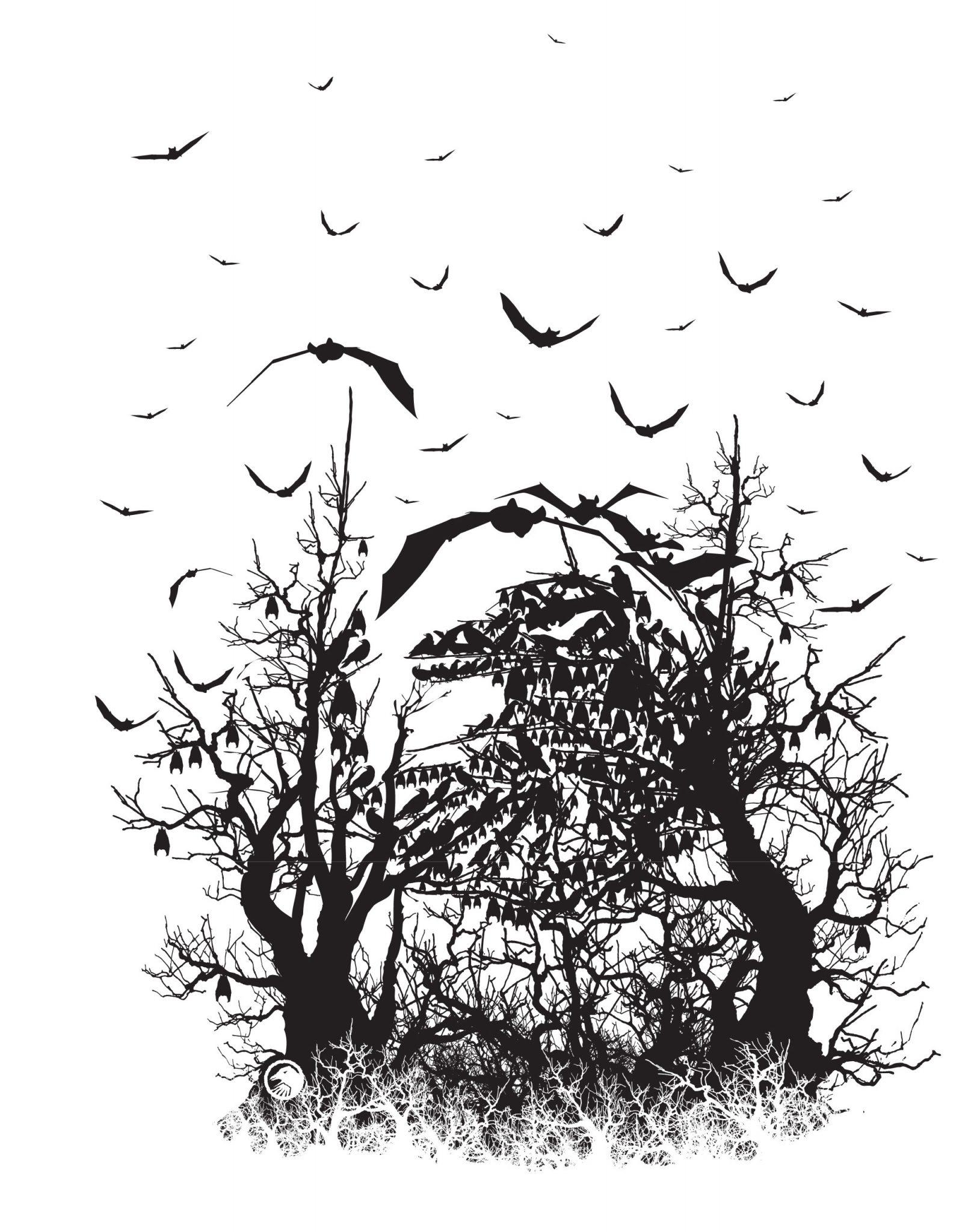 Shadow Spooky