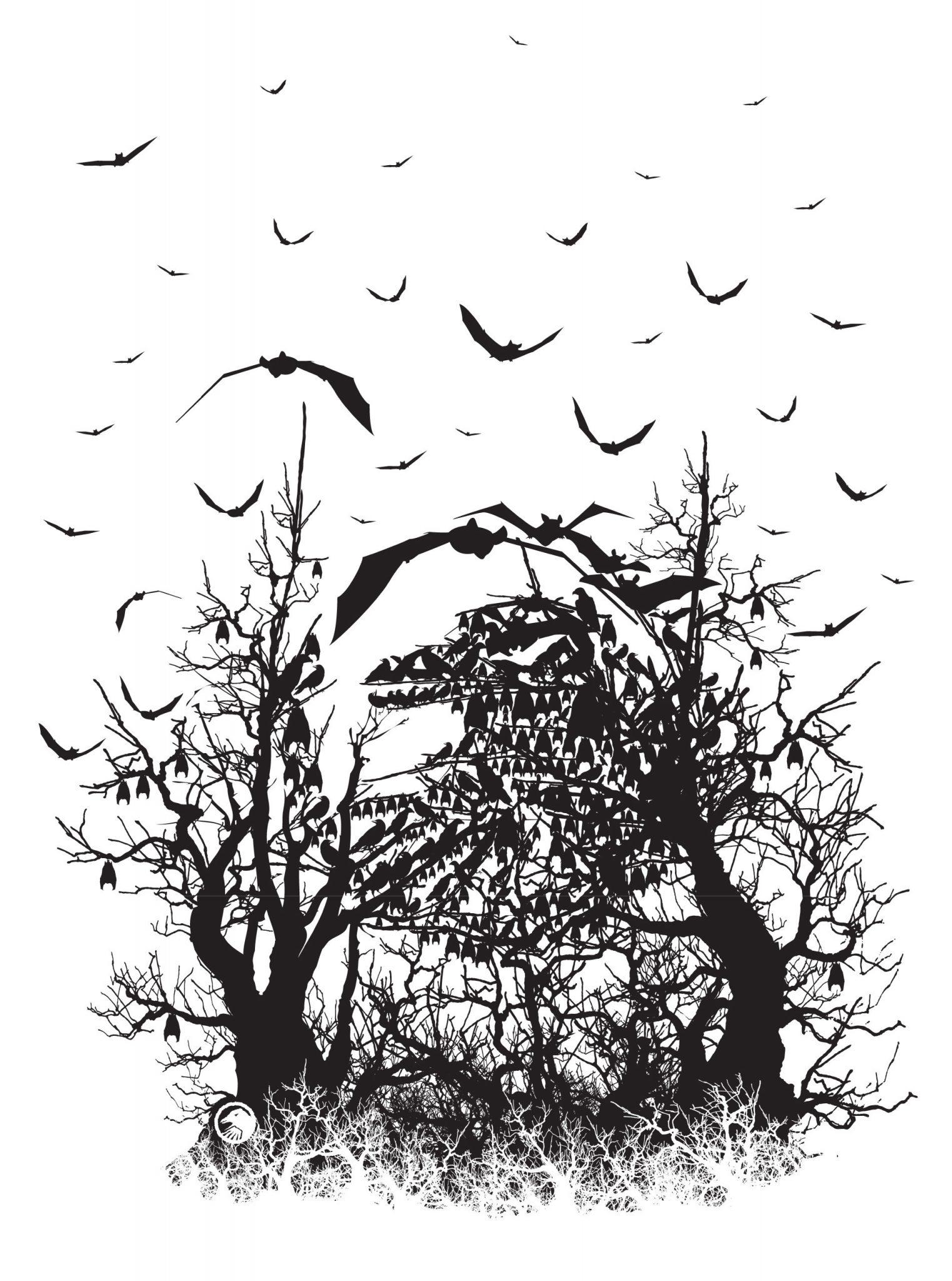 Shadow Spooky Art
