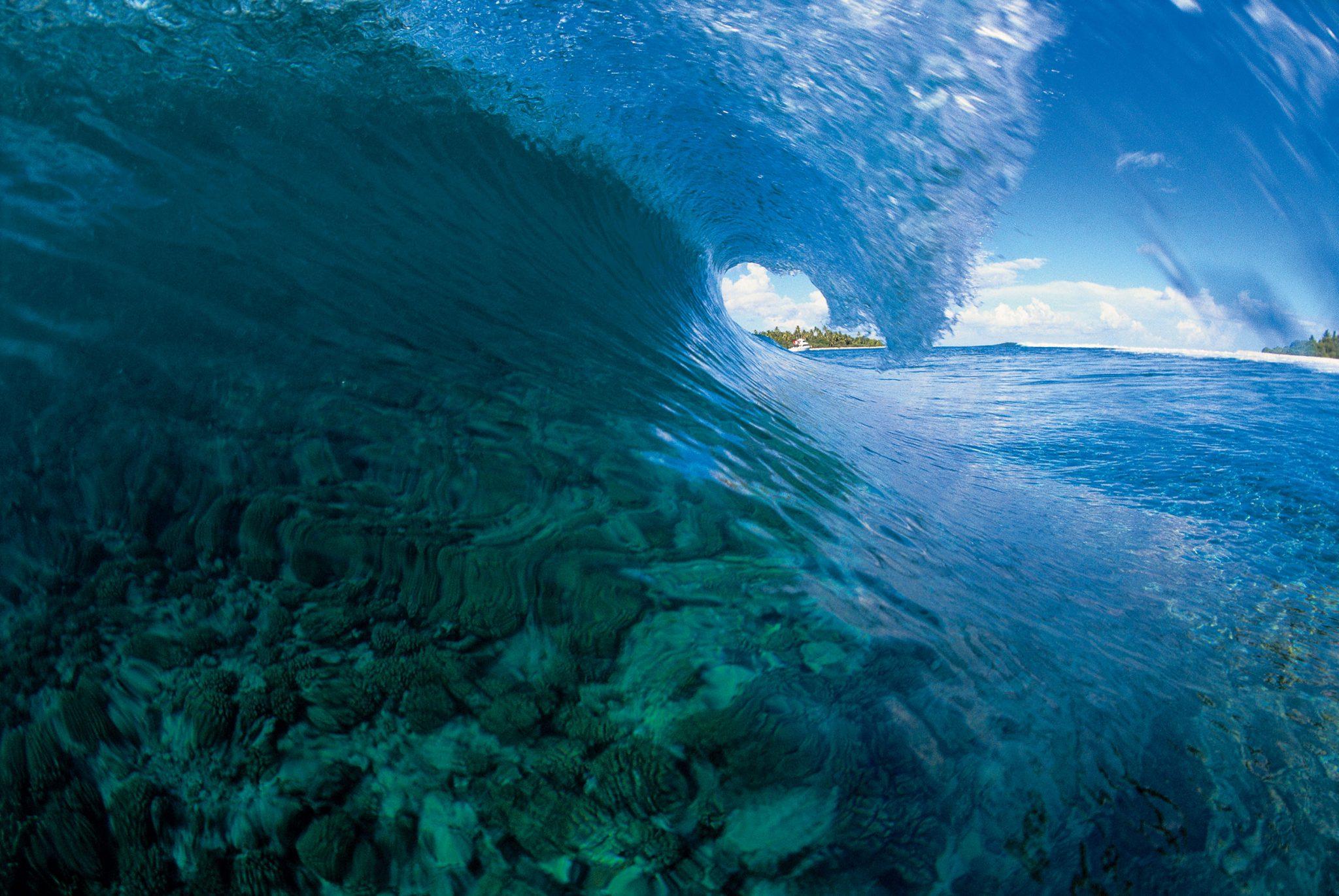 Tim McKenna Wave